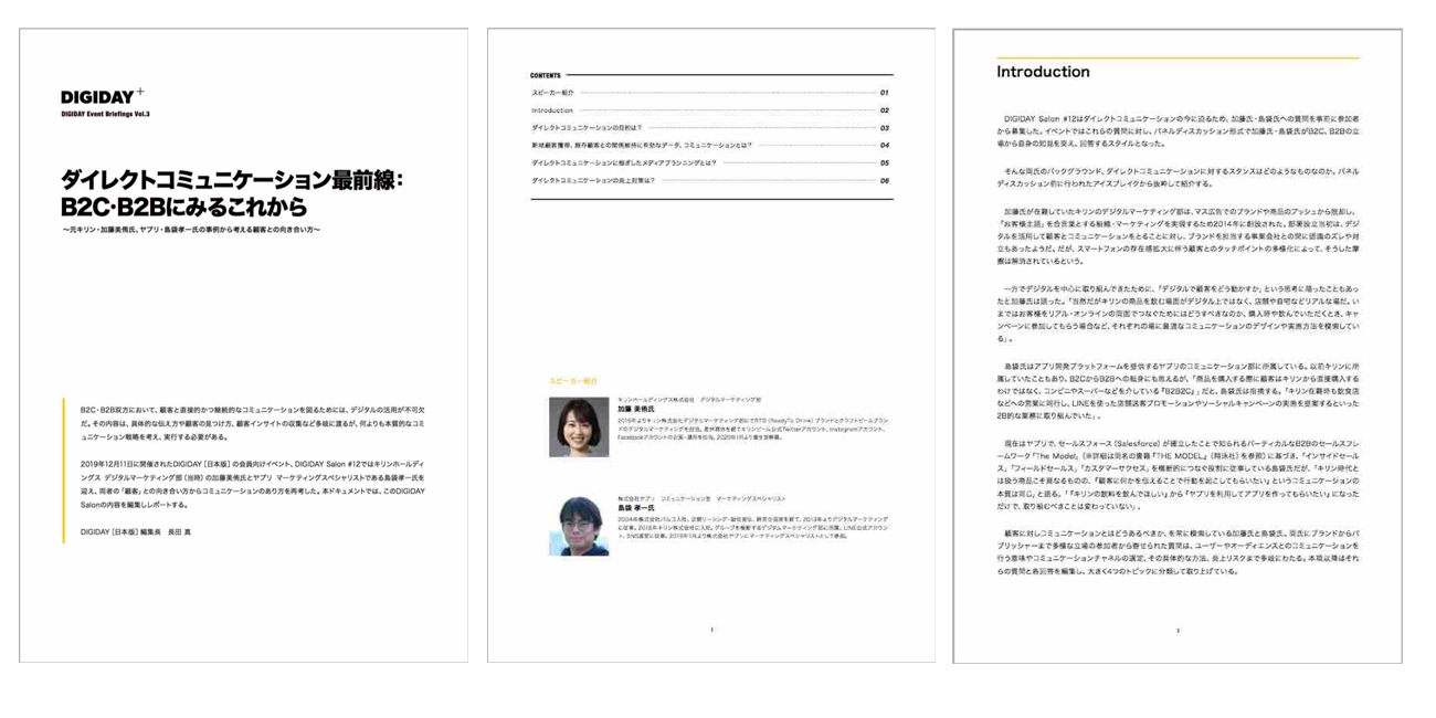 Salon10_WhitePaper_vol6-sum